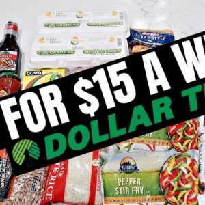 How to Eat for $15 a Week | Dollar Tree Budget Meal Plan | Extreme Grocery Haul