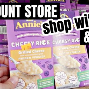 DISCOUNT STORE SHOP WITH ME & GROCERY HAUL   FRUGAL FIT MOM
